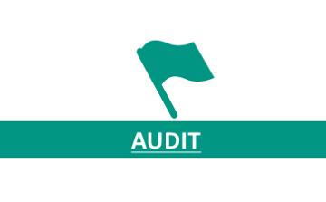 2_Audit